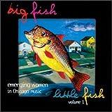 Big Fish Little Fish, Volume 1: Emerging Women in Chicago Music