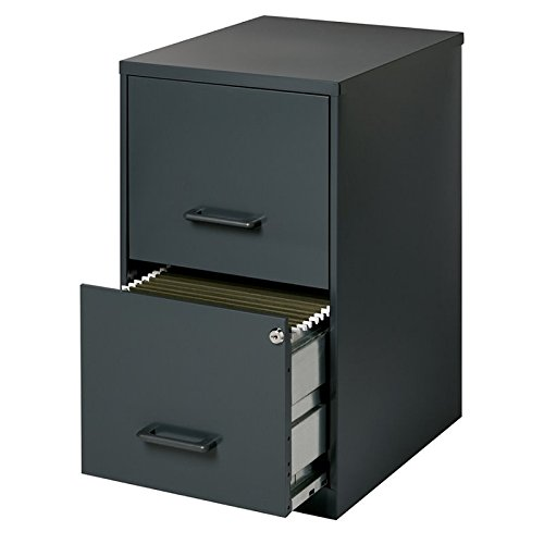 (Scranton & Co 2 Drawer Letter File Cabinet in Black)