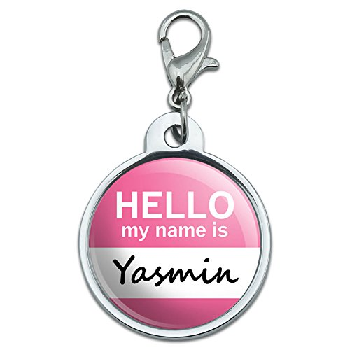 chrome-plated-metal-small-pet-id-dog-cat-tag-hello-my-name-is-va-yv-yasmin