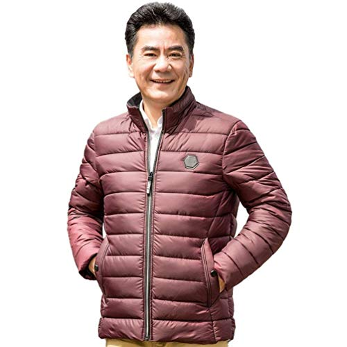 Men's Winter Coat with Stand Quilted Jacket Apparel Thickened Collar Winter Jacket Coat Coat Rot