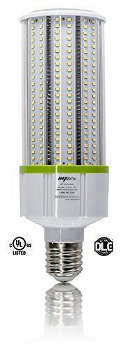 LIGHT 5000K Replaces lumens 100 277V product image