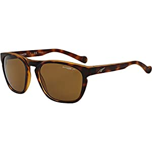 Arnette Groove Unisex Polarized Sunglasses - 2152/83 Fuzzy Havana/Brown