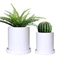 GeLive Set of 2 Matte White Ceramic Succulent Planter, Cylinder Plant Flower Pot with Drainage Hole and Tray Saucer, Nordic Minimalism, Elegant Modern Home Decor (Small + Medium, Matte White)