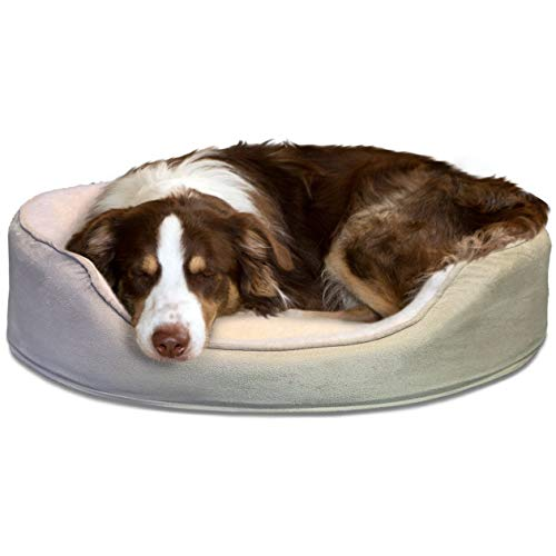 FurHaven Pet Dog Bed | Orthopedic Oval Lounger Pet Bed for Dogs & Cats, Clay, Large