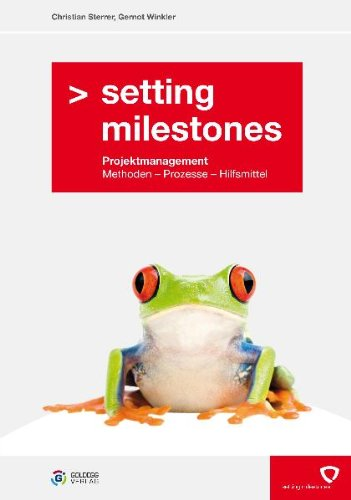 Setting Milestones - Projektmanagement Methoden, Prozesse, Hilfsmittel