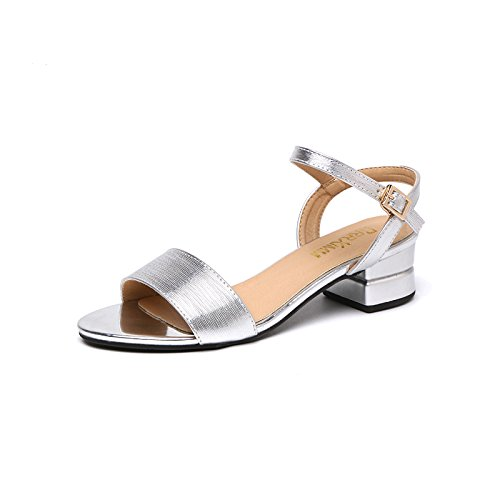 Heeled Daily Thick Sandals Sandals High ZHANGJIA Fashion Sandals With Work Solid Female Color Wild Summer Silver Female With w7Y1xSq