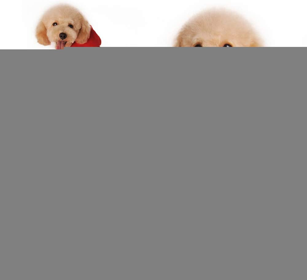 Eastlion perro ropa sudadera de forro polar Perros Ropa Sudaderas Perros Ropa Disfraces