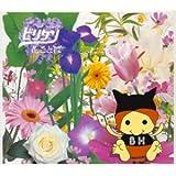 花ことば(初回限定盤)(CCCD)(DVD付)