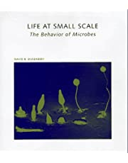 Life at Small Scale: The Behavior of Microbes