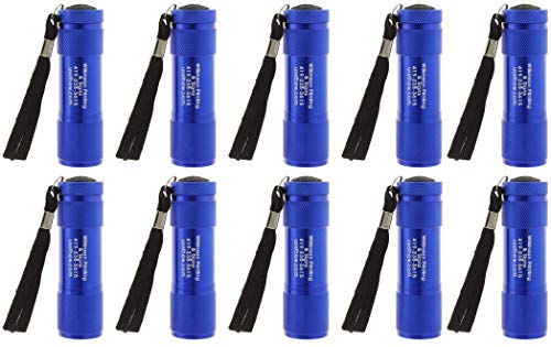 Set of 10 Personalized Handheld LED Flashlights, 3.5