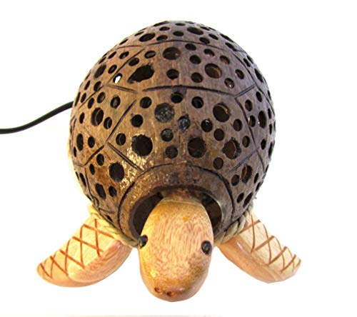 - Handmade Coconut Shell Light Small Turtle Lamp for Childs Room (Bobbing Turtle)