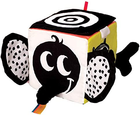 Manhattan Toy Wimmer Ferguson Learning Multi Sensory