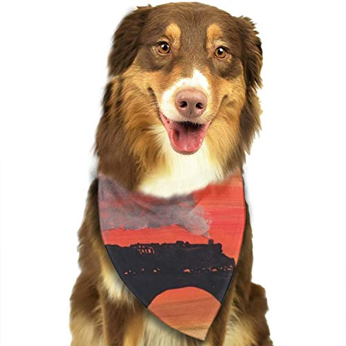 Pet Scarf Dog Bandana Bibs Triangle Head Scarfs Sunset Train Accessories for Cats Baby Puppy -