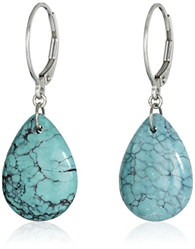 How to buy the best turquoise earrings kendra scott?