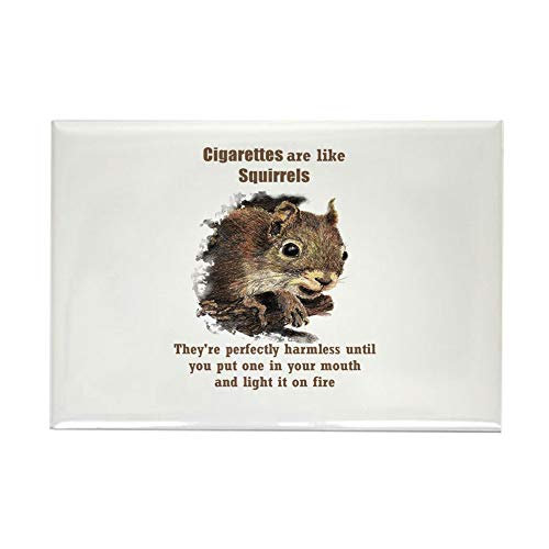 CafePress Cigarettes Quote Fun Squirrel Magnets Rectangle Magnet, 2