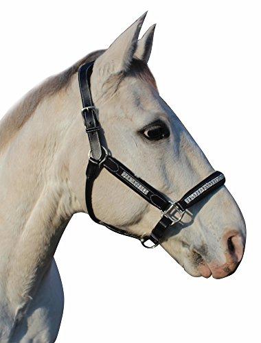 Henri de Rivel Padded Jewel Halter Horse (Fancy Horse Halters)