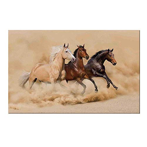 (YOLIYANA Horses Durable Door Mat,Three Horse Running in Desert Storm Mythical Mystic Messenger Animals Habitat Print for Home Office,17.7