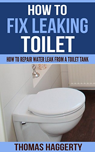How To Fix Leaking Toilet: How To Repair Water Leak From a