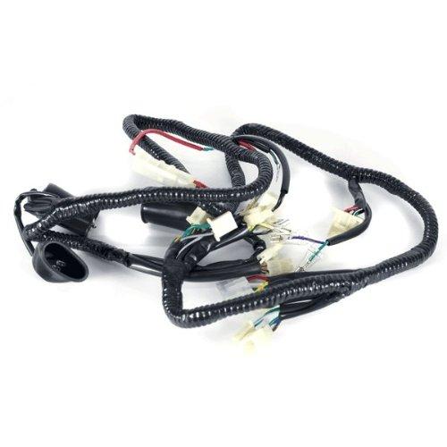 Wiring Loom (WRLM035):