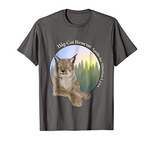 (Apollo the Siberian Lynx Tee Shirt)