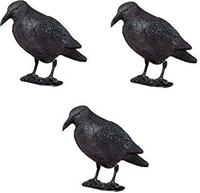 ARTECSIS Ahuyentador Aves - Cuervo Negro Espantapájaros de Plástico Efectivo para ahuyentar naturalmente Pájaros y Palomas de su Huerto, Jardín o Solar - 3 Unidades de 38 CM: Amazon.es: Jardín