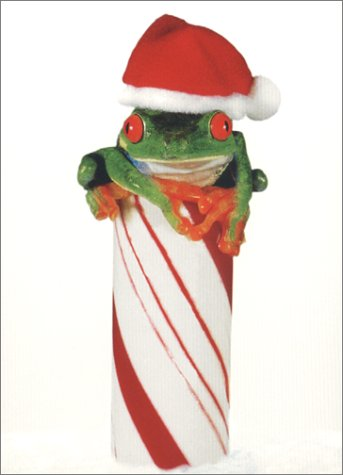 Candy Cane Frog (Frog/Candy Cane)