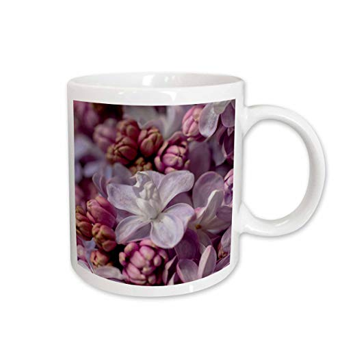 3dRose Alexis Photography - Flowers Lilacs - Mix of pink and purple lilac flower buds and flowers. Closeup view - 15oz Mug (mug_313181_2)