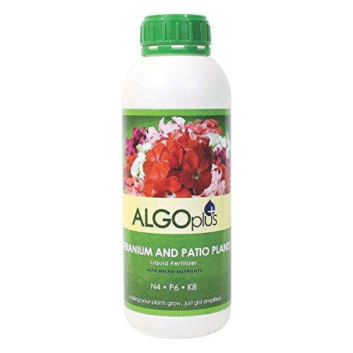 ALGOplus Geranium and Patio Plants - Liquid Fertilizer & Plant Food 1-Liter Bottle