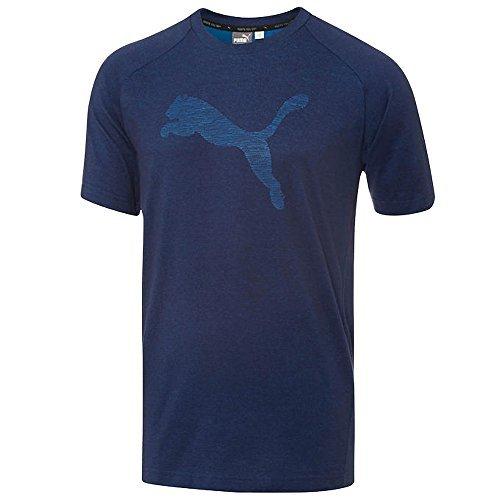 Puma Men's Short Sleeve Evostripe Tee (Large, Blue)