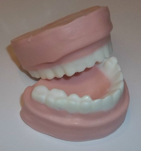 False Teeth Soap & Candle Mold- 2 cavities
