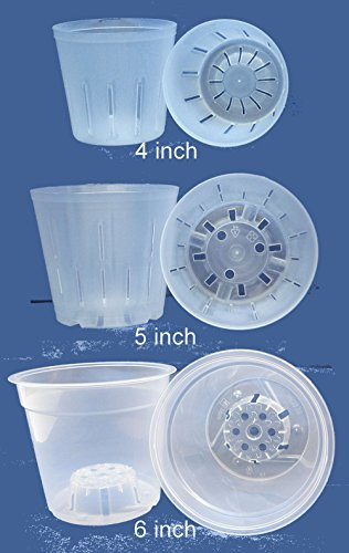 6 inch clear plastic orchid pots - 6