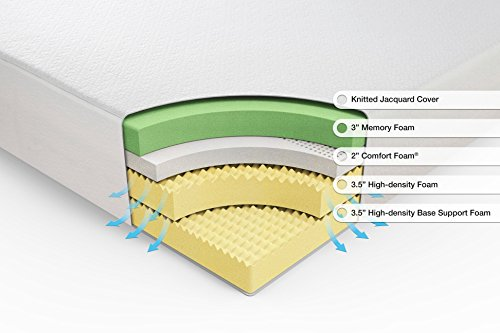 Zinus random access memory orthopedic 12 Inch Green Mattresses