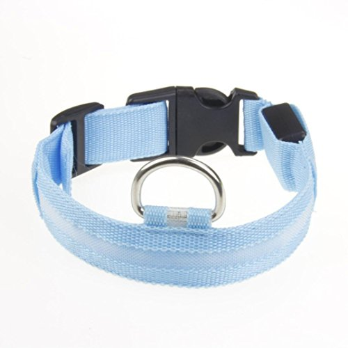 Price comparison product image Fheaven LED Dog Collar,  USB Rechargeable,  glowing pet dog collar for night safety,  fashion light up collar for small medium large xl-large dogs (M,  Blue)