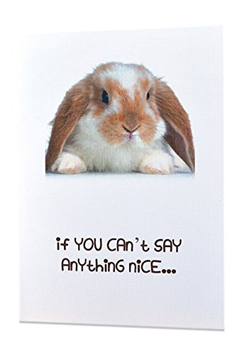 """Funny Inappropriate Adult Sexy Greeting Cards - """"If you cant say anything nice…"""" - All Occasions - Excellent Quality Printing + 100% Linen (How Do You Write A Sympathy Card)"""