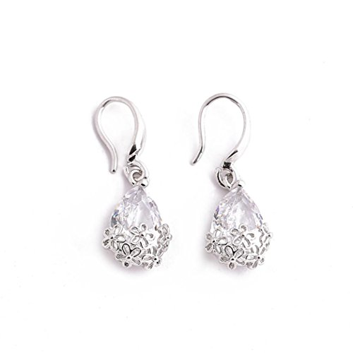 Price comparison product image Clearance Earrings Stud Dangle Drop Hoop AfterSo Womens Gift (Silver - 1)