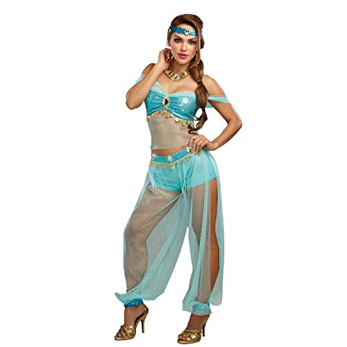 Dreamgirl Women's Harem Princess, Turquoise, XL
