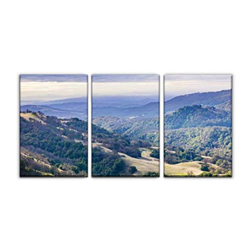Modern Canvas Painting landscape in joseph grant county park on a cloudy day, san jose, south Wall Art Artwork Decor Printed Oil Painting Landscape Home Office Bedroom Framed Decor (16