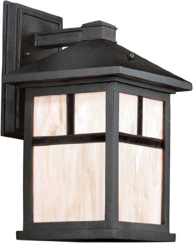 Forte Lighting Outdoor Sconce - 9