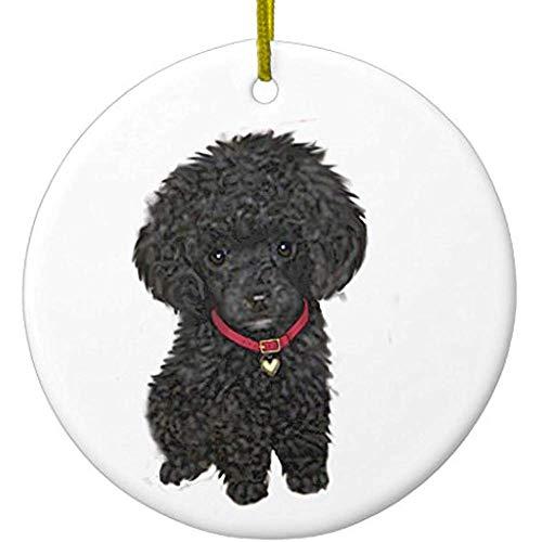 (Cheyan Miniature or Toy Poodle - Black 1 Ceramic Ornament Circle)