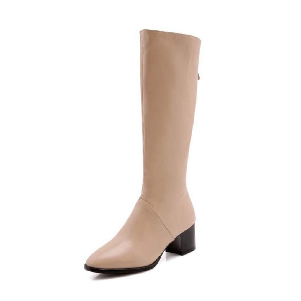 HAOLIEQUAN Plus Größe Größe Größe 34-50 Damen High Heels Kniehohe Stiefel Winter Warme Schuhe Frau Concise Reißverschluss Karree Lange Stiefel 559fd0