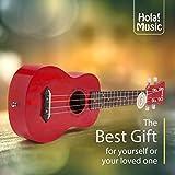 Hola! Music HM-121RD+ Deluxe Mahogany Soprano