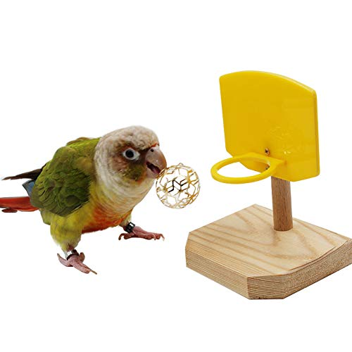 QBLEEV Bird Basketball Toy, Bird Chew Ball Foraging Toys, Parrot Activity Toys, Bird Training Gym Toys
