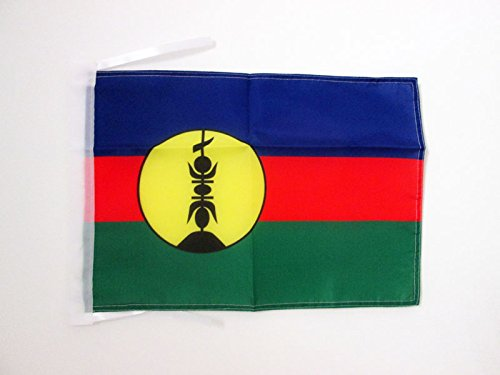 AZ FLAG New Caledonia Flag 18'' x 12'' Cords - New Caledonian Small Flags 30 x 45cm - Banner 18x12 in - Caledonia New Flag