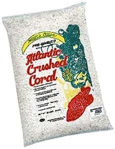 Worldwide Imports AWWA1037 Atlantic 1 Coral Sand, 20-Pound