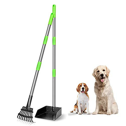 TOOGE Pooper Scooper, Dog Pooper Scooper Long Handle Stainless Metal Tray and Rake Set for Large Medium Small Dogs Heavy Duty (a-Green)