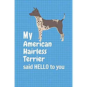 My American Hairless Terrier said HELLO to you: For American Hairless Terrier Dog Fans 30