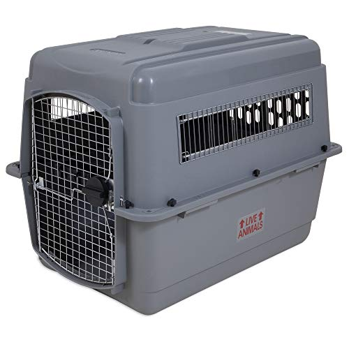 Petmate Sky Kennel Portable Dog Crate Travel Items Included 6 Sizes (Best Food At Midway Airport)