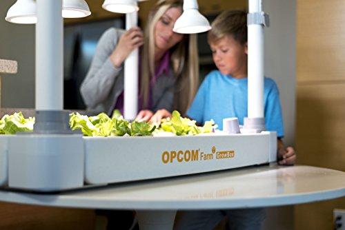 41G9IiFOZnL - OPCOM® Farm GrowBox (High Capacity, Hydroponics, indoor garden & farm, greenhouse,Growing herb, vegetable, flower, fruit)