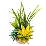 BEGONDIS Artificial Succulents Plants Plastic Fake Topiary Selected Combination Gray Pot Home Décor