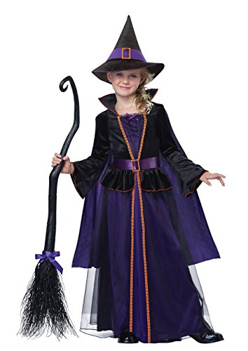 [California Costumes Hocus Pocus Child Costume, Large] (Halloween Witch Costumes Kids)